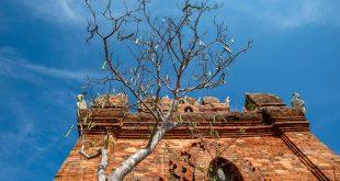 Tháp Po Rome Ninh Thuận