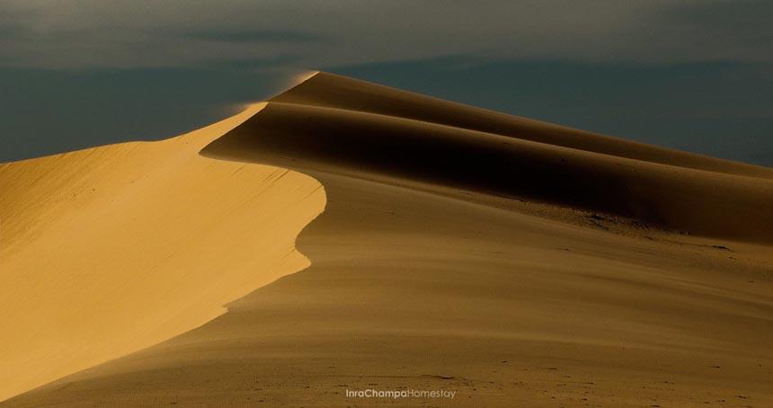 Đồi cát bay Ninh Thuận
